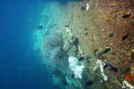 Lusong Gunboat Wreck Coron