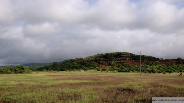 Intialainen pelto