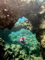 http://www.tropicallight.com/swim1/06apr16dougBD/06apr16dougBD.html