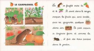 3 - Je lis avec les animaux de la campagne