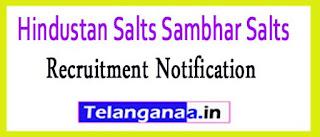 Hindustan Salts Sambhar Salts Limited Recruitment Notification 2017