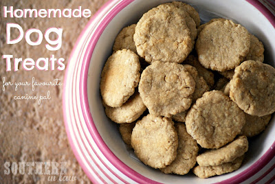 Healthy Homemade Dog Treats - Oatmeal Peanut Butter