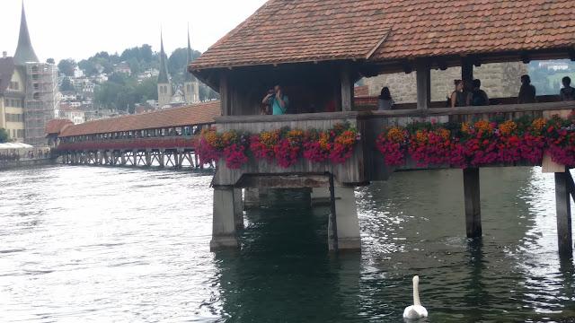 the flower bridge diagonally crossing the lake