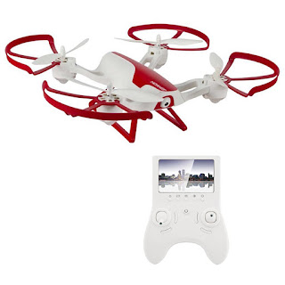 hornet fpv drone