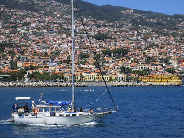 Gavião, a yacht with charm to relax