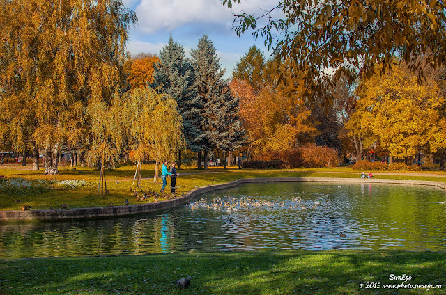 Осень в Колпино