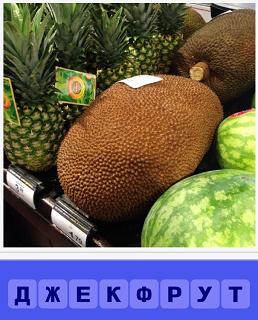 на полке в магазине в продаже лежит джекфрут и другие фрукты