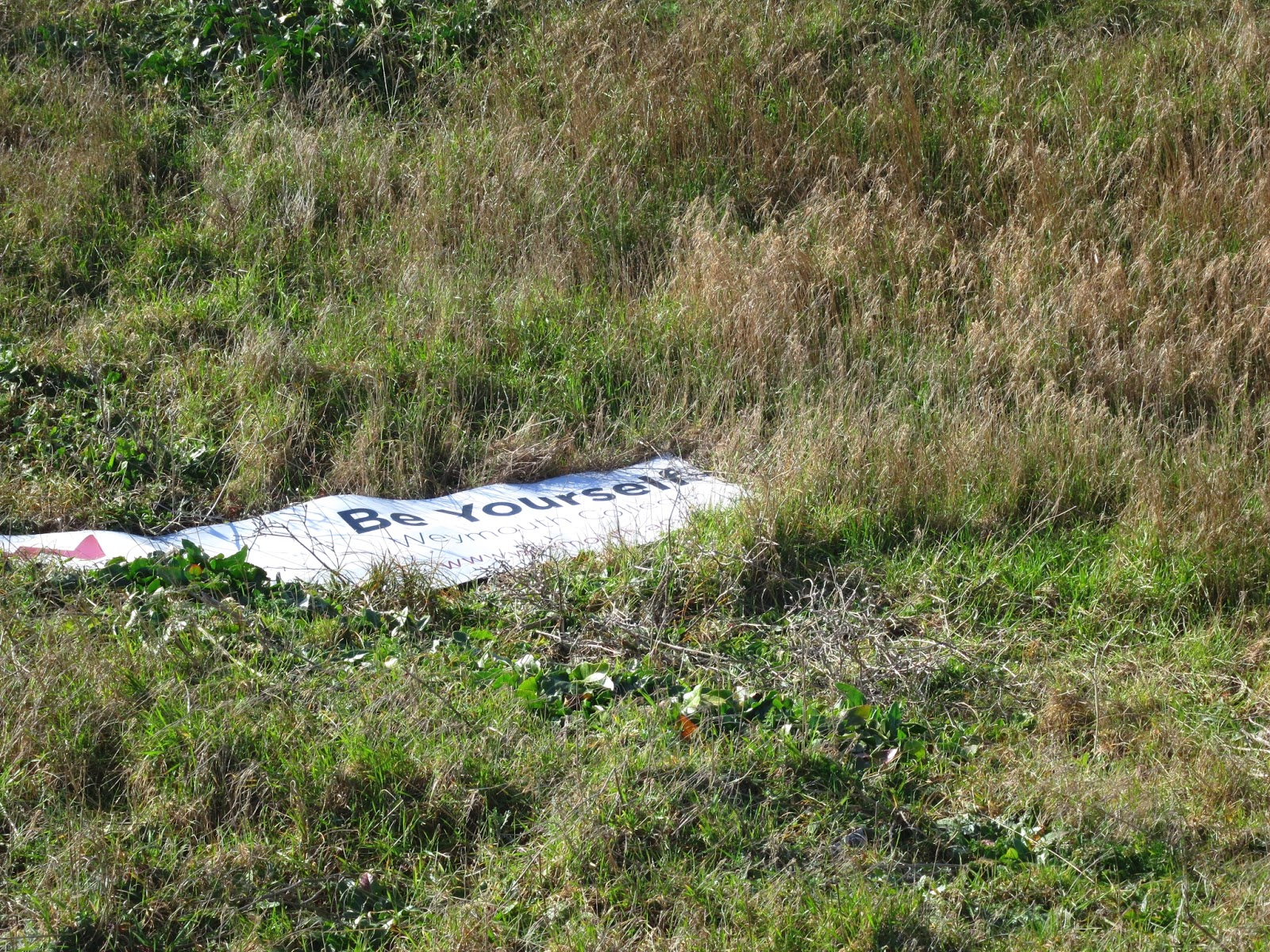 Banner saying 'Be Yourself' abandoned in rough grass.
