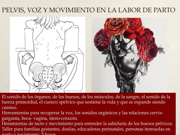 ADRIANA ORDONEZ ORTIZ. Experiencia Eco Somática y Anatomía ...