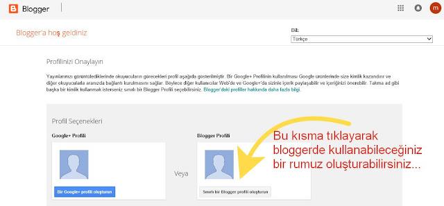 Blog Sitesi Nasil Açılır