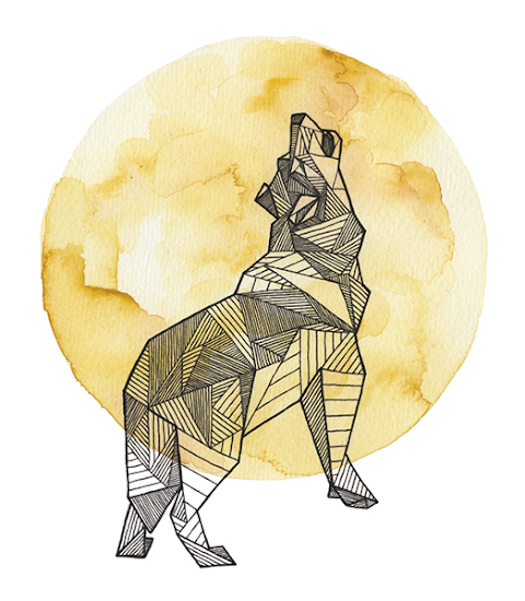 CULTURA DIGITAL Geometric Animals, proyecto de Allison Kunath