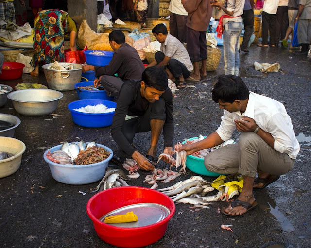 fish, sorting, baskets, sassoon docks, fish sellers, mumbai, streetphoto, incredible india