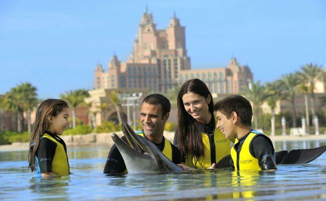 أتلانتيس دبي (Atlantis Dubai)  رجل امرأة اطفال دولفين سباحة غطس عائلة family man woman dolphin diving pool swimming