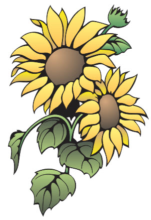 Kaligrafi Bunga Matahari Cikimm Com