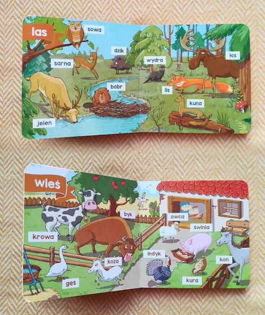 katarzyna-urbaniak-ilustracje-dla-dzieci--illustration-for-children--kapitan-nauka-100-słówek-zwierzęta-animals