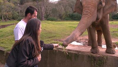 A apresentadora visita o zoológico pela primeira vez - Divulgação
