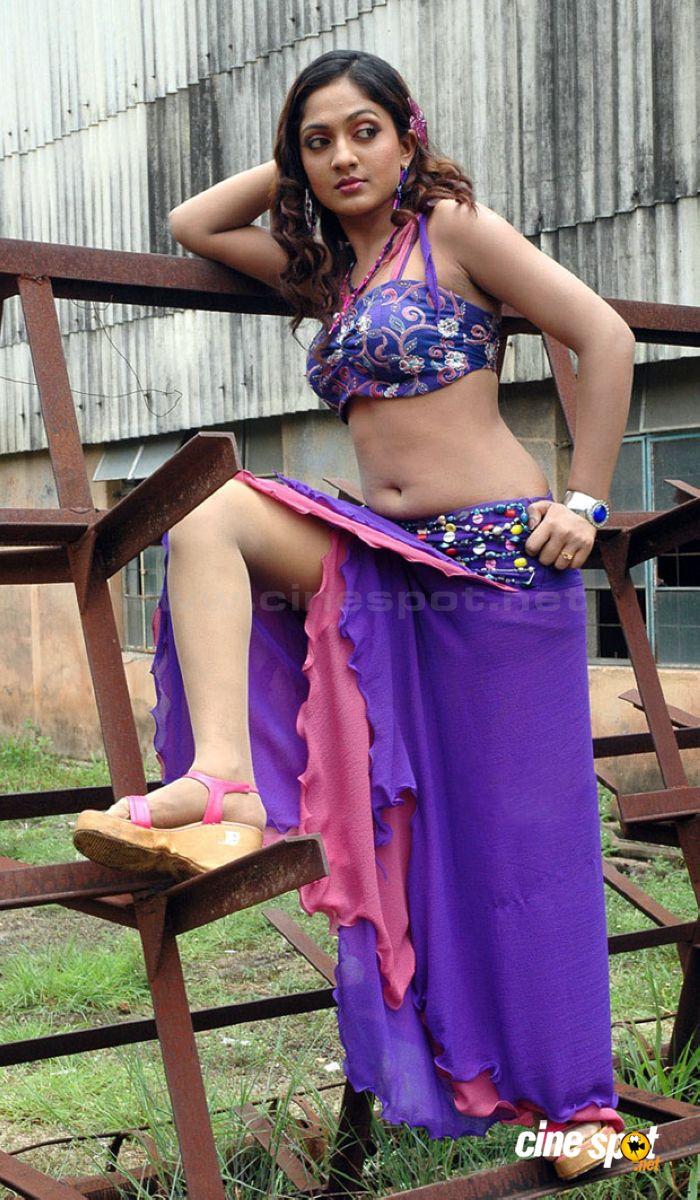 Hot  Sexy Indian Film Actress Sheela Kaur Hd Photos 2017 -5087