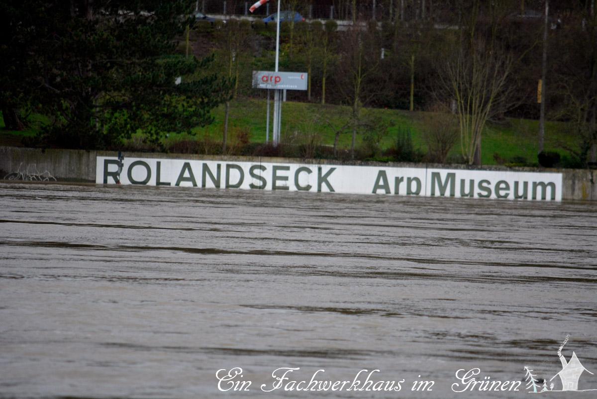 Rolandseck, Hochwasser, Arp Museum