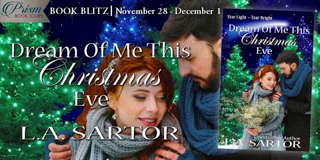 Dream of Me This Christmas Eve book blitz banner