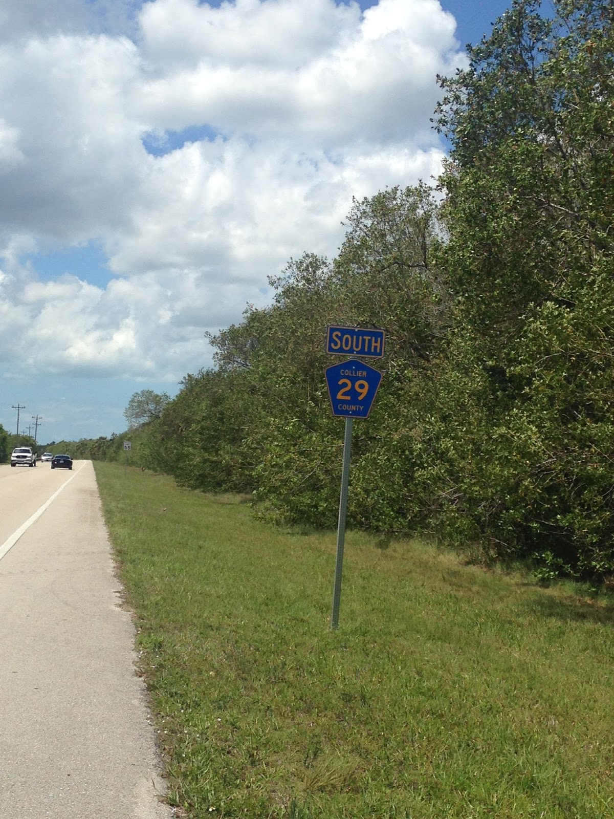 spent in the everglades over the years i ve never had been to everglades city that being the case i took cr 29 south off of us 41 for a scenic detour