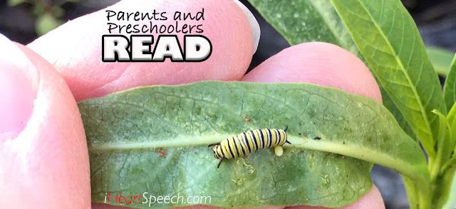 a very tiny caterpillar eating a leaf. Activities to go along with The Very Hungry Caterpillar