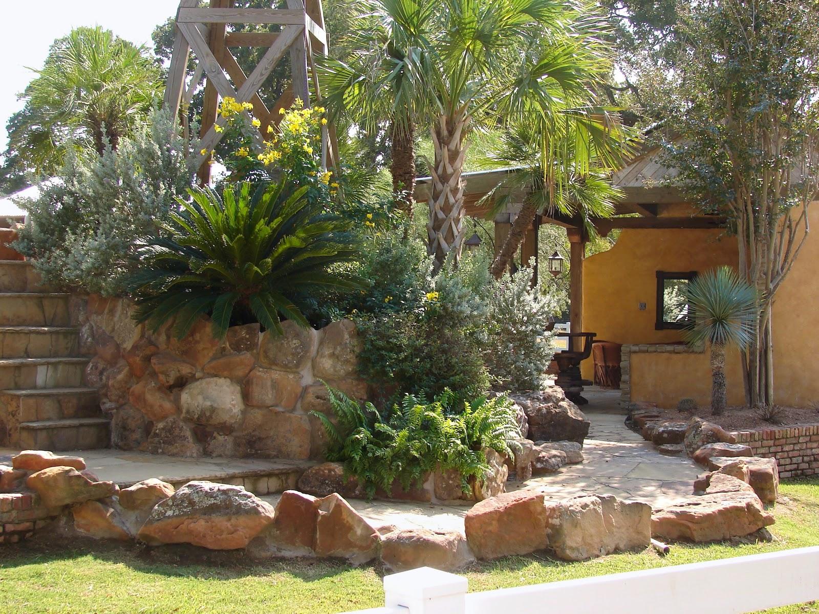 desert landscape front yard - landscape ideas