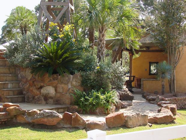 desert landscape front yard