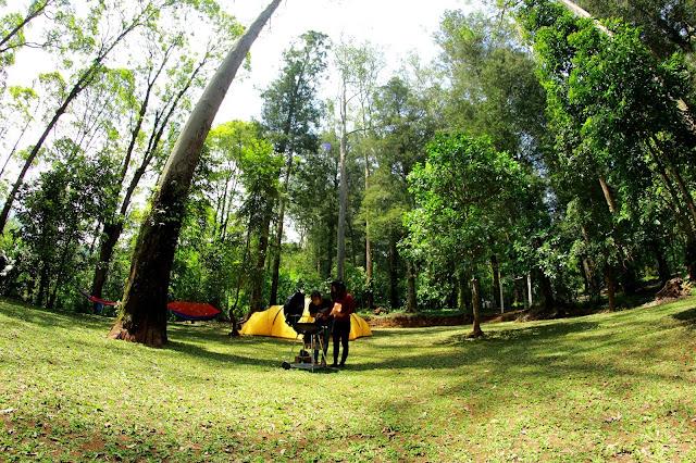 Keindahan Mojo semi forest Park Magetan