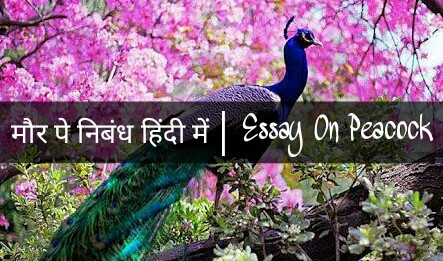 Essay on Peacock in Hindi
