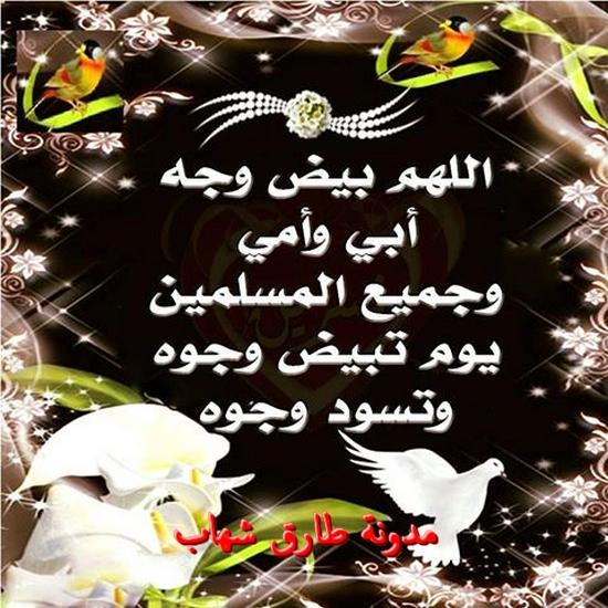 اللهم بيض وجة ابى وامى وجميع المسلمين  يوم تبيض وجوه وتسود وجوه