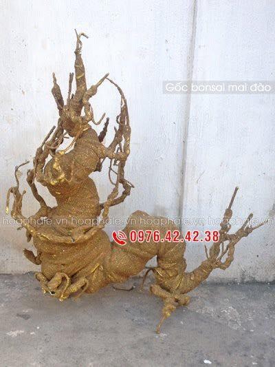 Goc bonsai mai dao tai Thuong Thanh