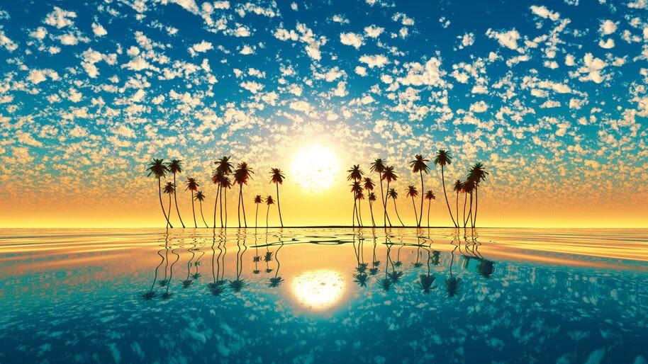 Sea, Sunset, Reflection, Palm Trees, Cloud, Sky, Scenery, 4K, #6.982