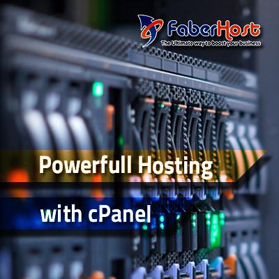 Hosting Service Provider
