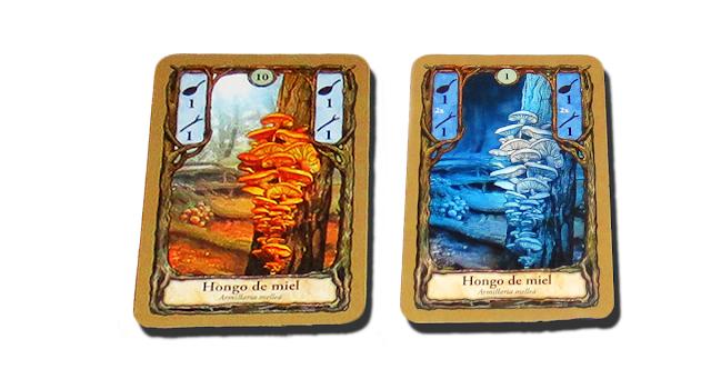 Imagen de cartas del juego Fungi