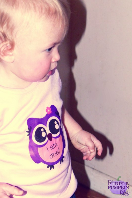 Ideas for an #owl themed 1st birthday party ~ The Purple Pumpkin Blog