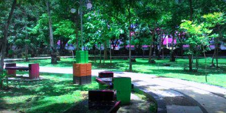 Saat Panas Menyengat di Siang Hari di Kota Kendari Anda Bisa Bersantai Melepas Penat di Bawah Pohon Rindang di Taman Walikota Kendari
