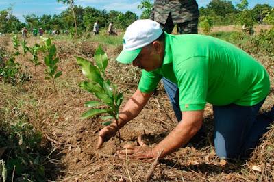 Acciones reducir impactos ambientales