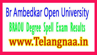 BRAOU Degree 1st 2nd Year Spell Exam Results 2017