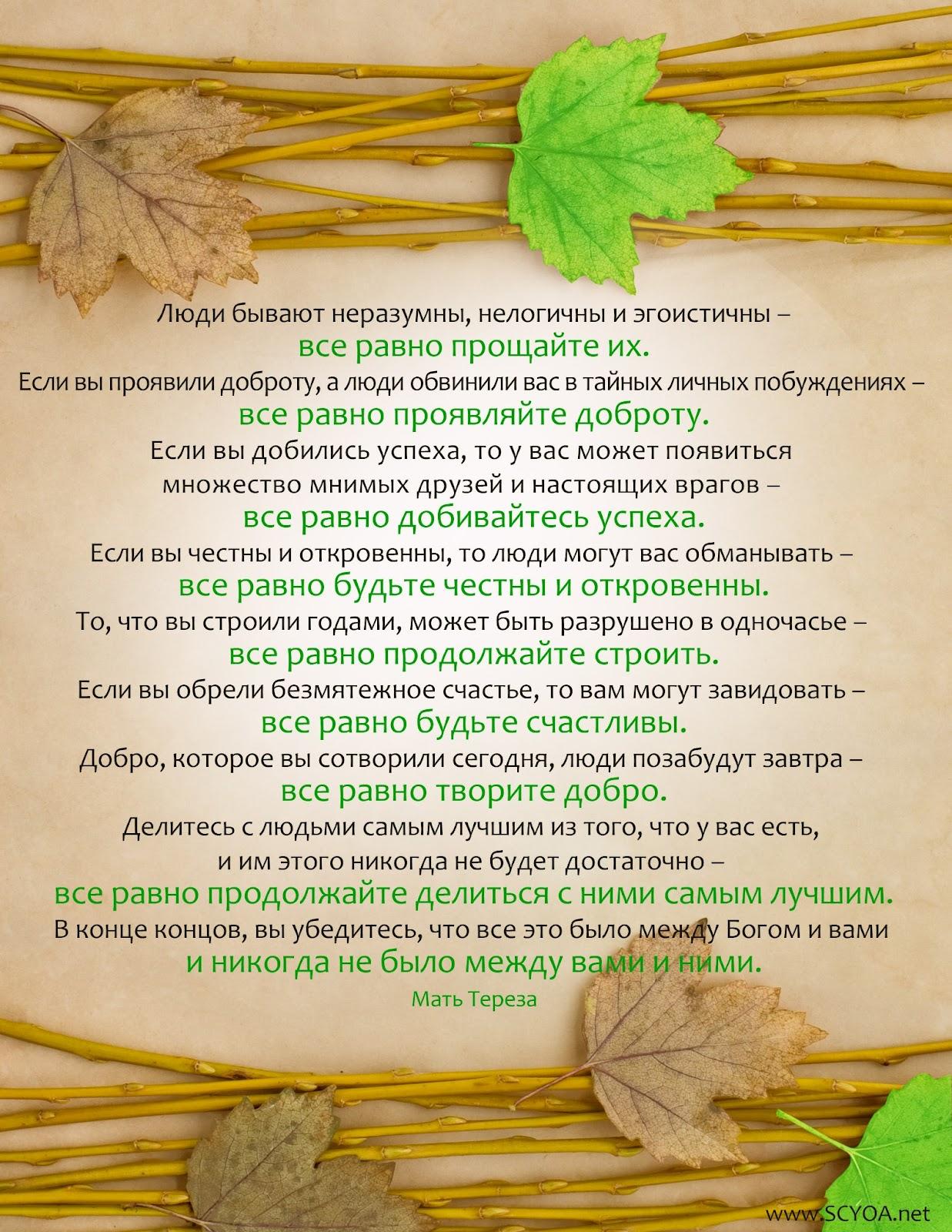 10 заповедей Матери Терезы рекомендации