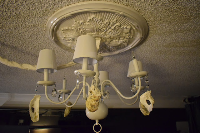 JoFer Interiors,Chic,Thrifty,D.I.Y ideas for decorating a chandelier, using oyster shells and crystals