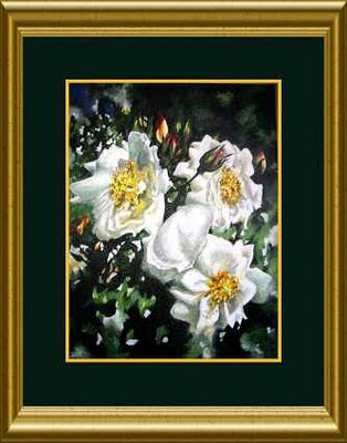 original acrylic painting of white roses on bush in garden by artist Jillian Crider 14x11""