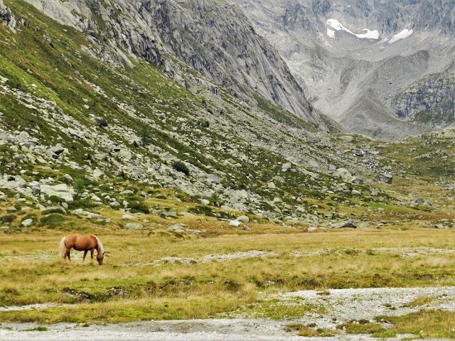 valle Adamé Brescia