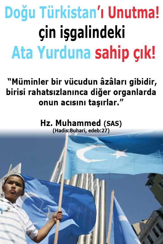 doğu türkistan, türk bayrağı, bayrak, türkistan, mavi ayyıldız, ayyıldız, bayrak