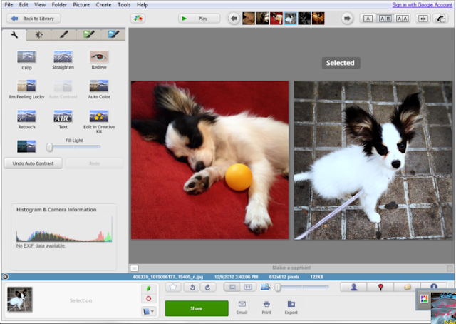 Picasa Photo Editor Latest Version free download