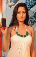 Riya Sen Exclusive Bikini Pics ~  Exclusive 003.jpg