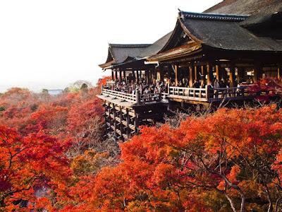 Hãy đọc những điều đẹp đẽ dưới đây về Nhật Bản