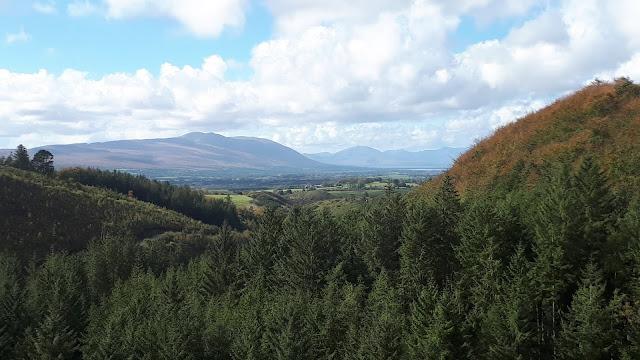 Kuusimetsä, vuoret, Irlanti