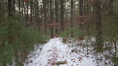 snow covered trail in the Franklin Town Forest along Summer St