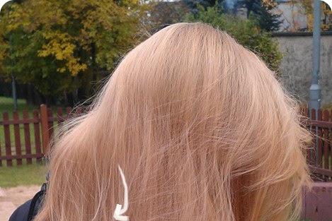 Efekt nadmiaru protein | Przeproteinowanie podczas laminowania włosów żelatyną - czytaj dalej »