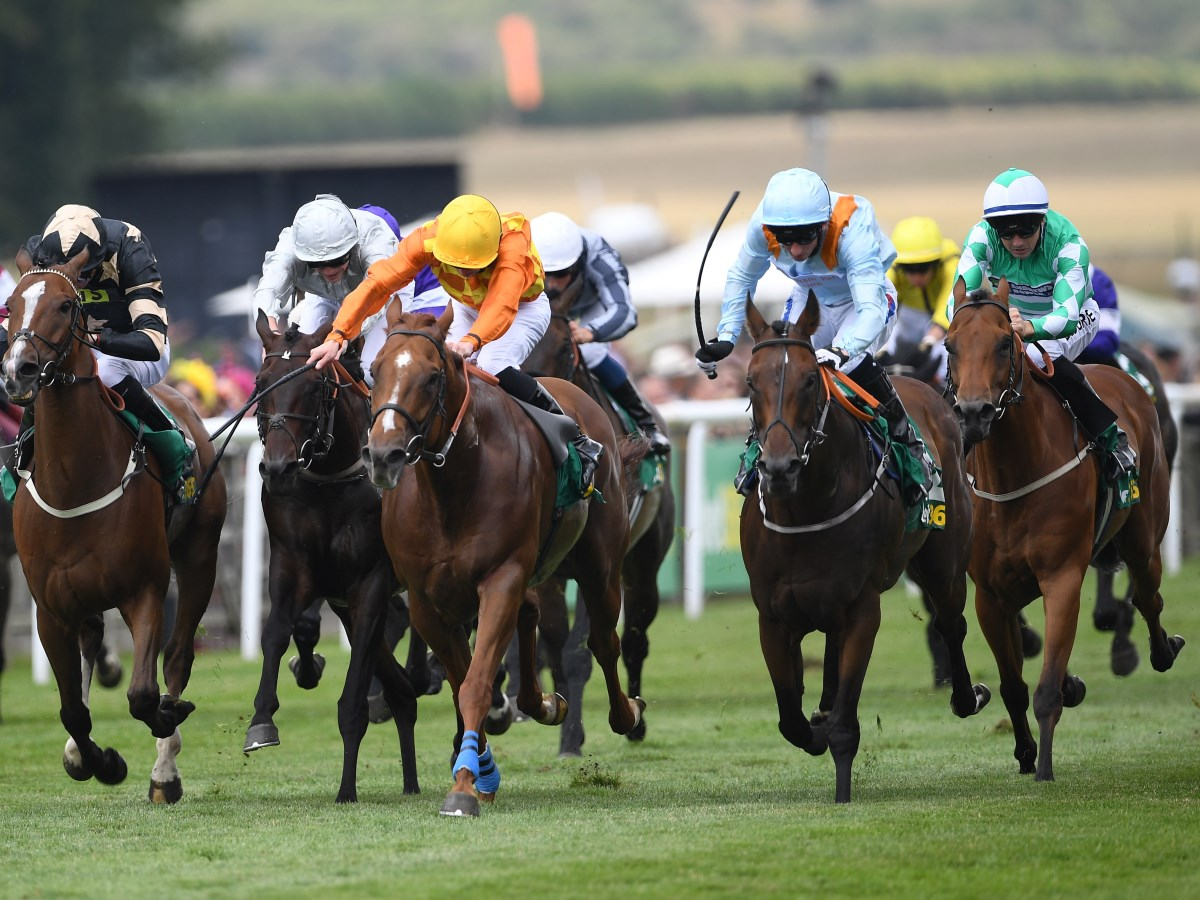 Spanish City - horse racing